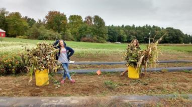 Anna & Pete taking out sunflowers